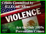 illegalidiots