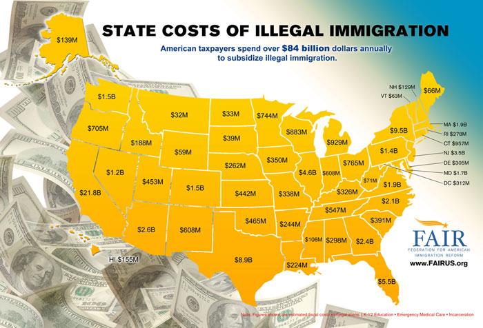 illegalidiots3
